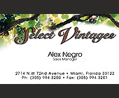 Select Vintages Wine Company - tagged with grapes